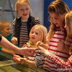 Klappa havet - Sjöfartsmuseet Akvariet, Göteborg