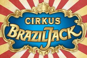 brazil jack 15